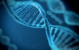 Molecular biology for diagnostic