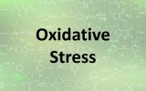 Assay kits - Oxidative stress