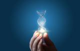 Technologie CRISPR/Cas9