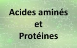 Kits de dosage - acides aminés et protéines
