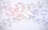 Acides aminés