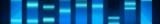 ADN polymérases rapides classiques