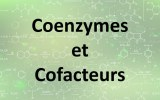 Coenzymes et cofacteurs
