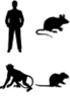 Toutes espèces