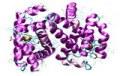 Service à façon : Analyses de protéines
